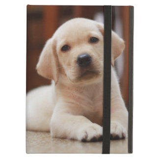Baby Yellow Labrador Puppy Dog laying on Belly iPad Air Covers