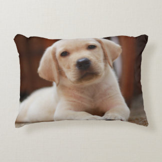 Baby Yellow Labrador Puppy Dog laying on Belly Accent Pillow