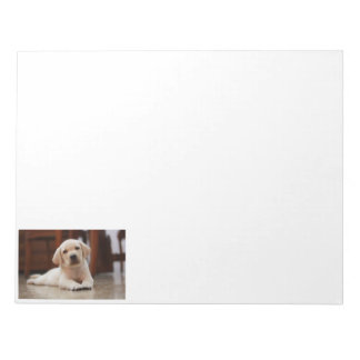 Baby Yellow Labrador Puppy Dog laying on Belly Note Pad