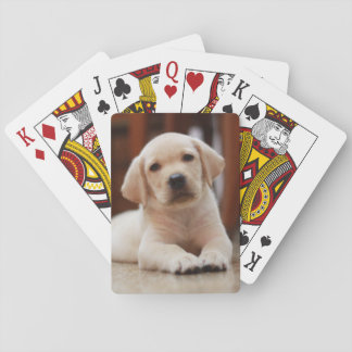 Baby Yellow Labrador Puppy Dog laying on Belly Poker Cards