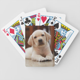 Baby Yellow Labrador Puppy Dog laying on Belly Card Decks