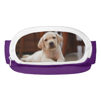 Baby Yellow Labrador Puppy Dog laying on Belly Visor