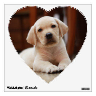 Baby Yellow Labrador Puppy Dog laying on Belly Wall Stickers
