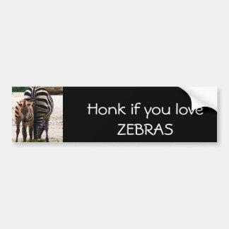 Baby Zebra Car Bumper Sticker