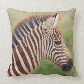 Baby zebra head, Tanzania Throw Pillow
