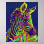 baby zebra in crayon colors poster