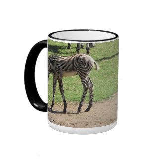 Baby Zebra Mug