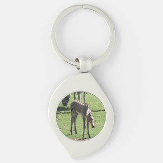 Baby Zebra Key Chain