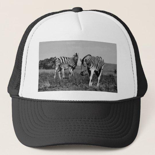 Baby zebra suckling trucker hat