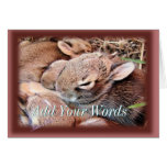BAbyBunnies-any occasion-customize Card