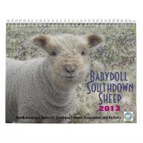 Babydoll Southdown Sheep 2013 NABSSAR calendar