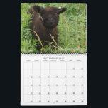 "Babydoll Southdown Sheep 2017 NABSSAR Calendar<br><div class=""desc"">The NABSSAR&#39;s annual calendar featuring the thirteen winning 2016 calendar photo contest submissions from the association&#39;s members.  Enjoy!</div>"