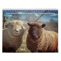 Babydoll Southdown Sheep 2021 NABSSAR Calendar