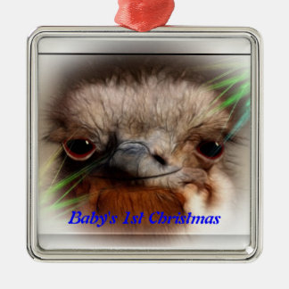 Baby's 1st Christmas / Ostrich Ornament