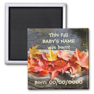 Baby's Birth Date magnet Autumn Leaves Baby Born