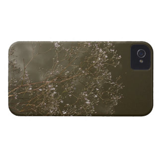 babys breath iPhone 4 cover