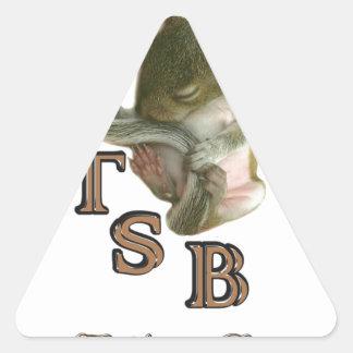 BabySque.JPG Triangle Sticker