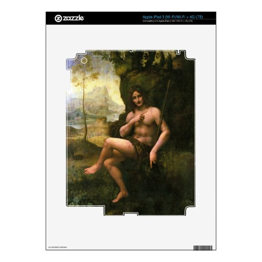 Bacchus, c.1695 (oil on canvas) skins for iPad 3