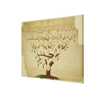 Bach Family Tree, c.1750-1770 Canvas Print