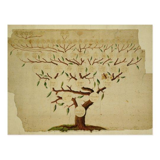 Bach Family Tree, c.1750-1770 Postcard
