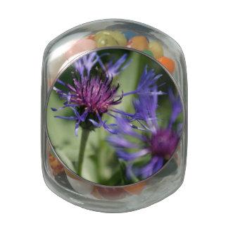 Bachelor Button Plant Glass Jars