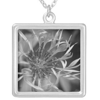 Bachelor Button Square Pendant Necklace
