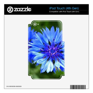 Bachelor Buttons iPod Touch 4G Skins