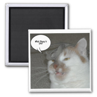 Bachelor Party Humor 2 Inch Square Magnet