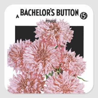 Bachelor's Button Seed Packet Label Square Sticker
