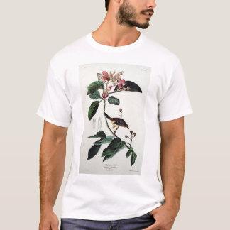 Bachman's Finch T-Shirt