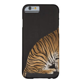 Back end of tiger sitting on platform barely there iPhone 6 case