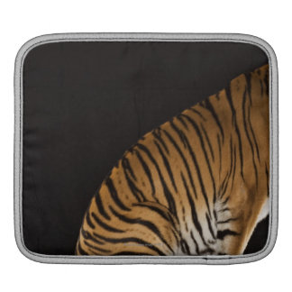 Back end of tiger sitting on platform iPad sleeves
