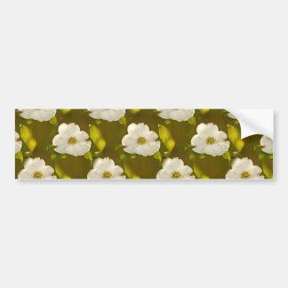 Back-lit Dogwood Blossom Wallpaper Bumper Stickers
