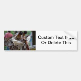 back of giraffe head animal image bumper sticker