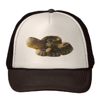 Back Off or I'll Bite Cha, Rattlesnake Trucker Hat