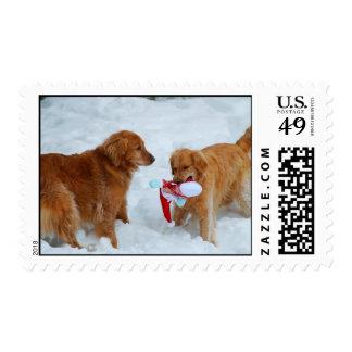 Back Off Or Santa Gets It Postage Stamp