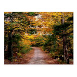 Back Road Fall Save the Date Template Postcards