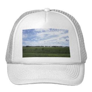 Back Road Trucker Hat