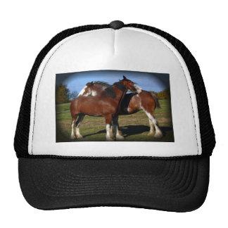 Back scratching mares trucker hat