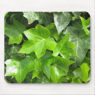 Back to Nature: Ivy Leaves Mouse Pad