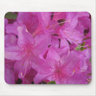 Back to Nature: Pink Rhododendron Mouse Pad