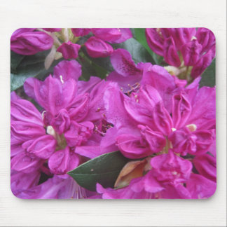 Back to Nature: Purple Rhododendron Mouse Pad