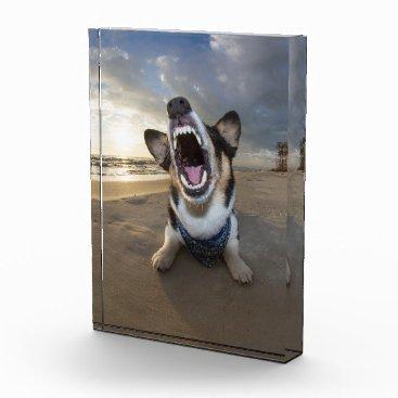Beach Themed Back to School Acrylic Award