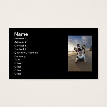 Beach Themed Back to School Business Card