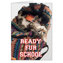 Back to School Kitten in Backpack