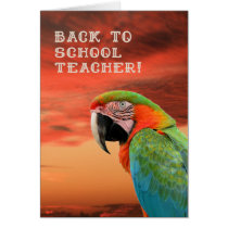 Back to School Teacher Card with Parrot