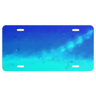 Back to Space License Plate