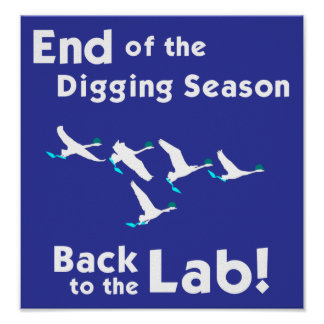 Back to the Lab! Poster