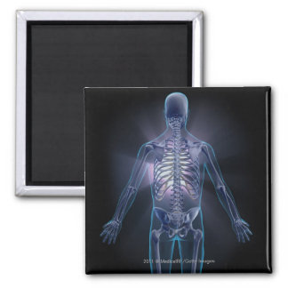 Back view of a human skeleton 2 inch square magnet