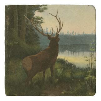 Back view of Elk Looking over a Lake Trivet